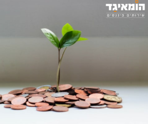 צמיחה כלכלית בעסקים